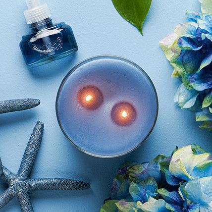 2 wick candle and scentplug refill with decorative item