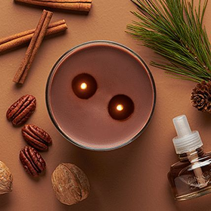 2 wick candle and scentplug refill placed in between dried spices