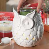 Owl Scenterpiece Warmer