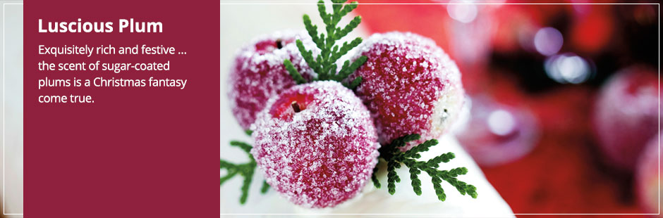 Luscious Plum Candles: the scent of sugar-coated plums is a Christmas fantasy come true