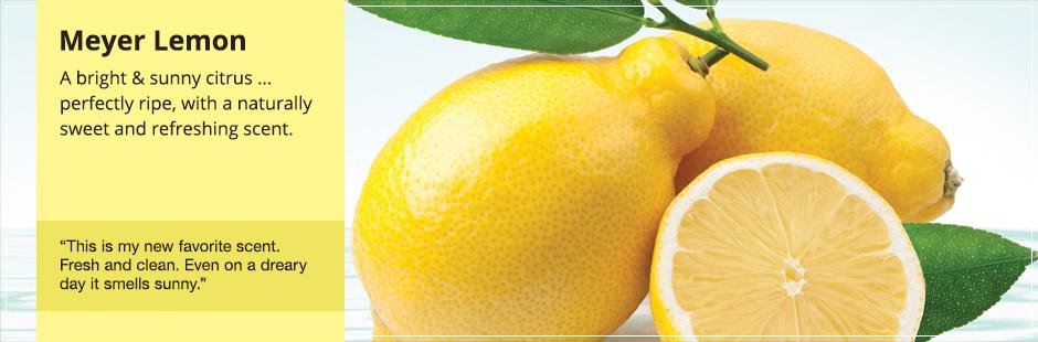 Смотреть порно лимон 2