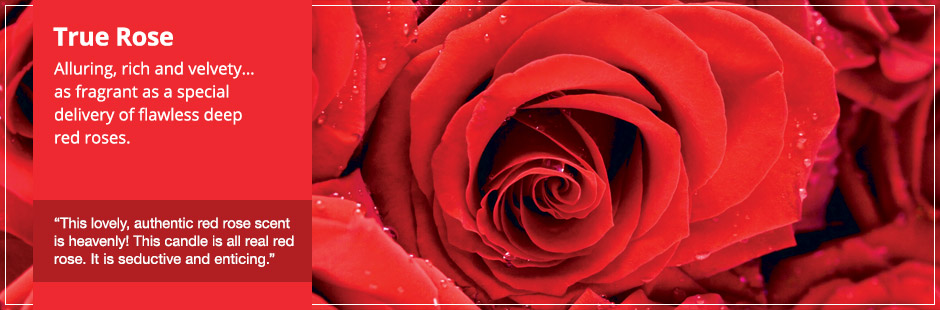 True Rose: Alluring, rich and velvety… as fragrant as a special delivery of flawless deep red roses.