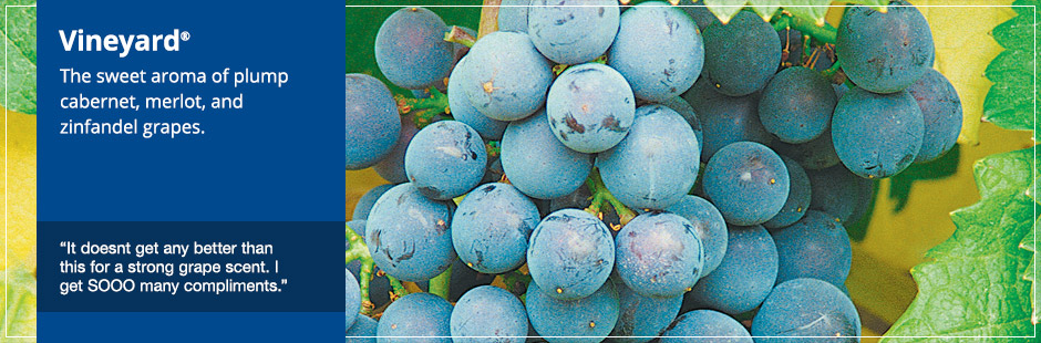 Vineyard®: The sweet aroma of plump cabernet, merlot, and zinfandel grapes.