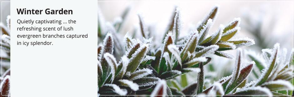 Znalezione obrazy dla zapytania winter garden yankee candle