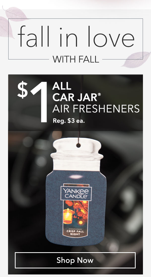 $1 All Car Jar® Air Fresheners