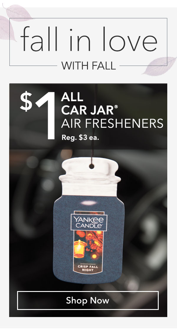 $1 All Car Jar Air Fresheners